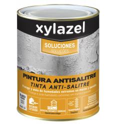 XYLAZEL SOLUCIONES PINTURA ANTISALITRE VARIOS TAMAÑOS
